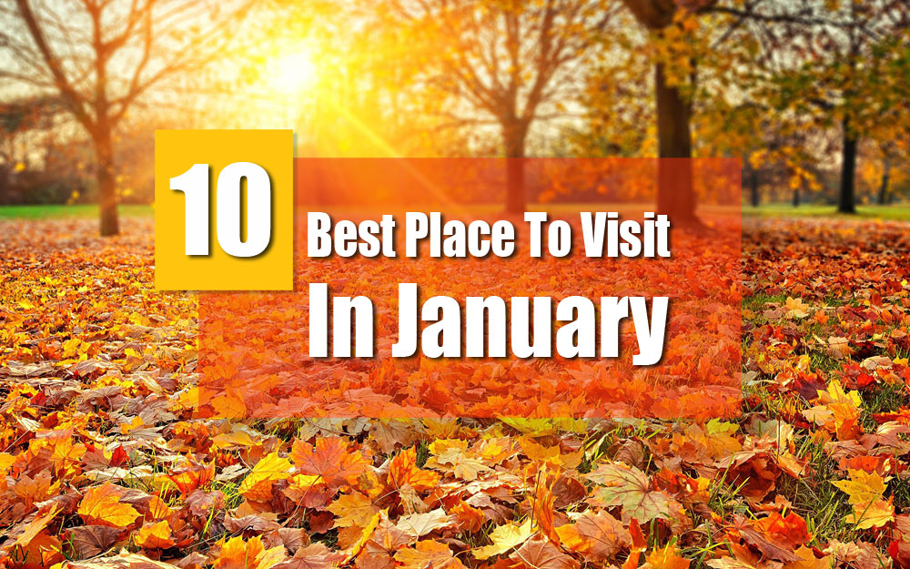Best Places To Visit in January: India Popular destinations